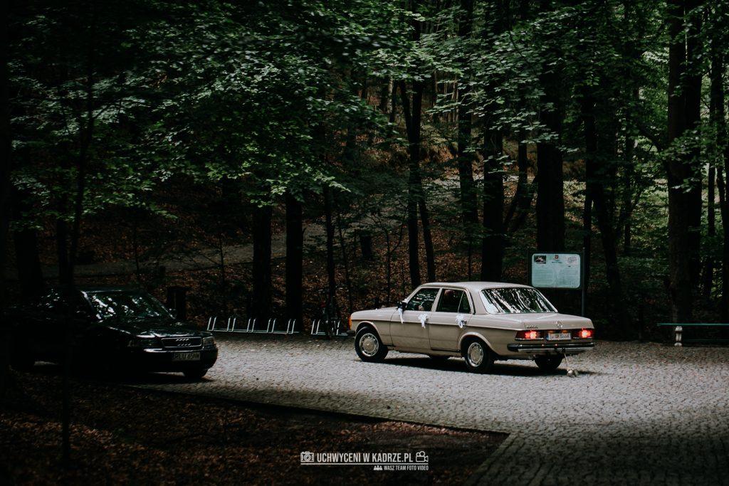 Iza Bartek Ślub w lesie Horyniec Zdrój 75 1024x683 - Plenerowy Ślub w lesie + Teledysk Ślubny | Horyniec Zdrój