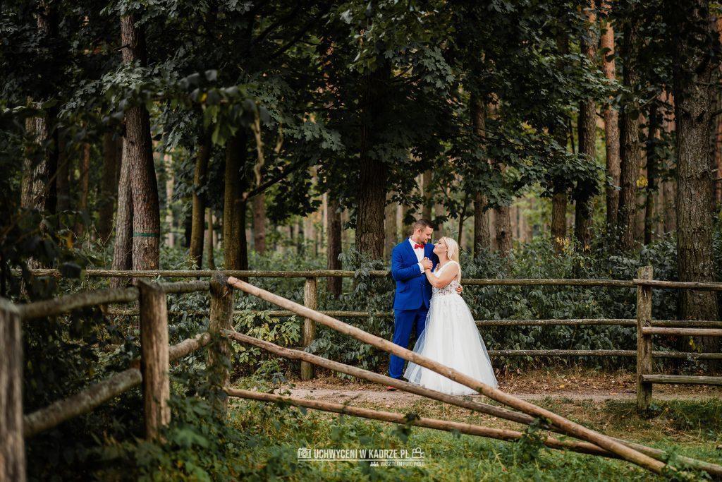 Justyna Konrad Sesja Ślubna Zwierzyniec Lubelskie 29 1024x683 - Justyna & Konrad | Sesja plenerowa na Roztoczu