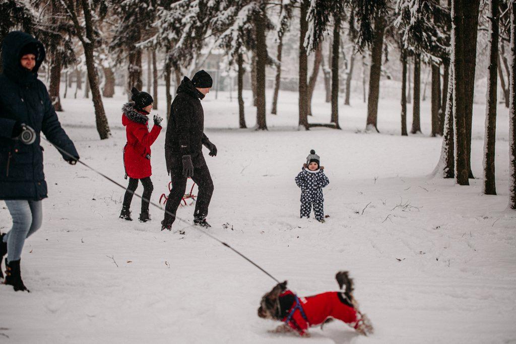 rodzinna sesja zimowa chelm 12 1024x683 - Justyna i Kamil z dziećmi – zimowa sesja rodzinna
